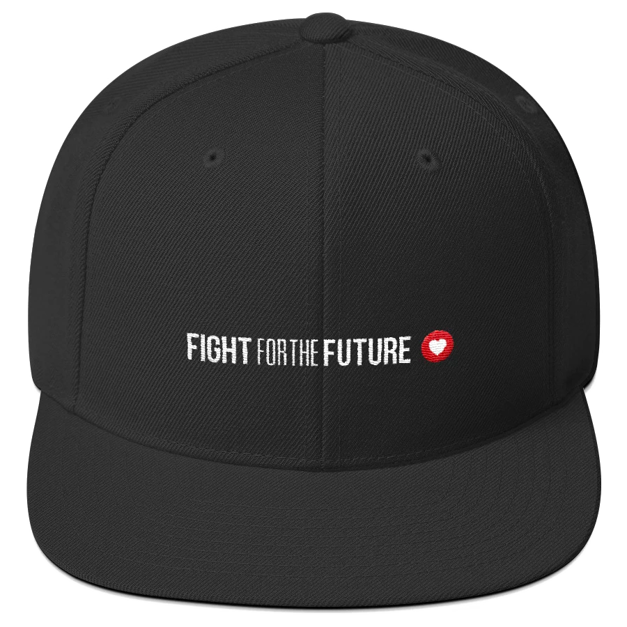 Fight for the Future, Hat