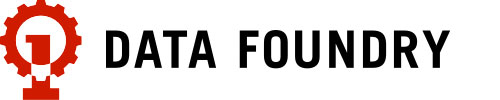 Data Foundry - Logo