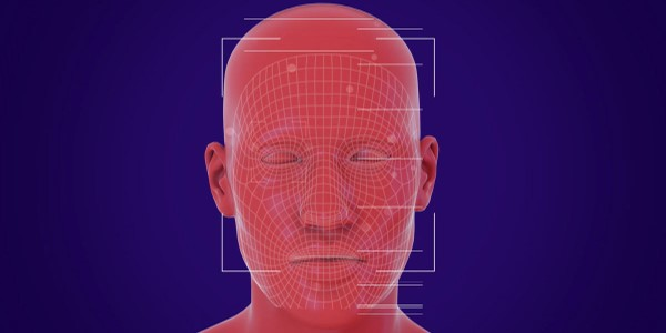 A face is scanned using facial recognition technology